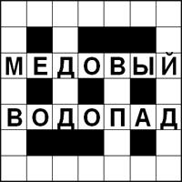 Кроссворд «Медовый Водопад» - найдите шесть слов и впишите их в пустые клетки