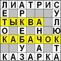 Кроссворд «Тыква и Кабачок» - найдите шесть слов и впишите в пустые клетки