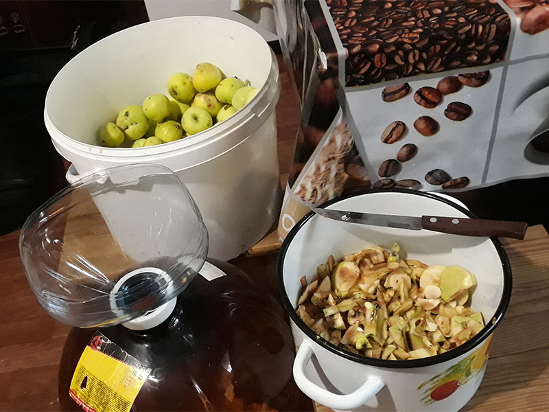 Яблочная брага может оказаться очень вкусной даже без перегонки