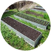 На своей загородной даче мы уже успели использовать несколько видов грядок для выращивания овощей и цветов