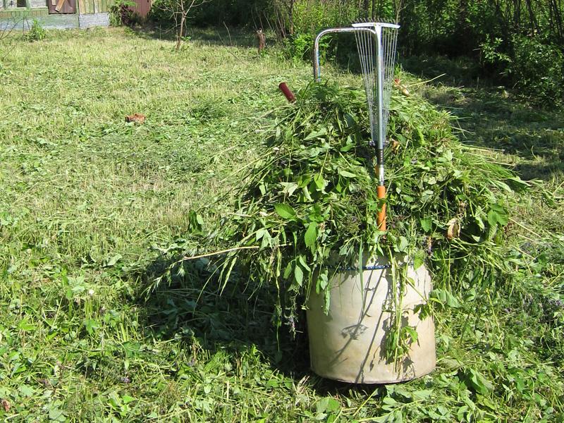 Фотография пластмассовых грабель, которые мы используем при сборе травы после скашиваня триммером.