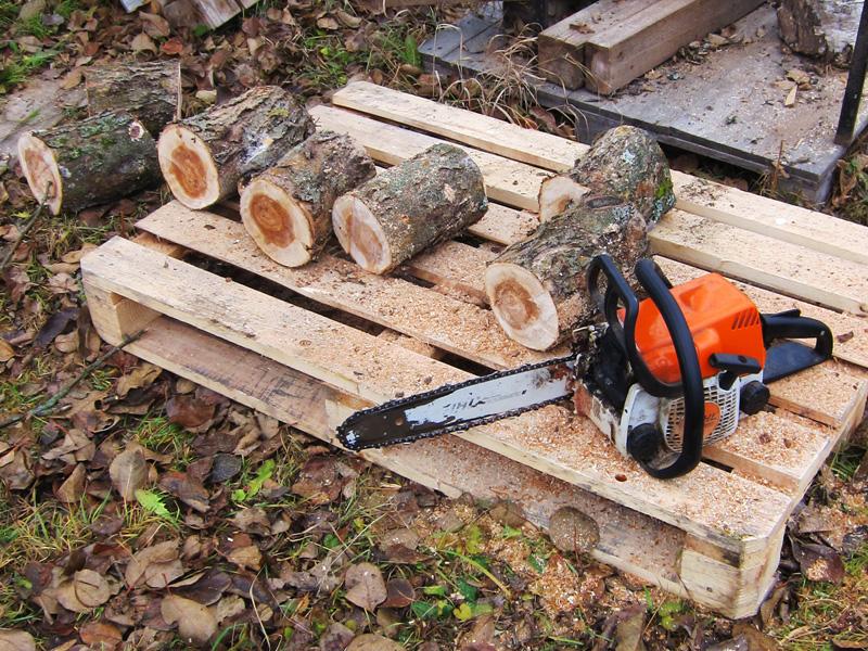Бензопилой можно пилить стволы деревьев
