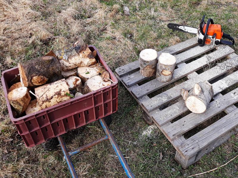 Бензопила легко порежет ствол дерева на короткие чурки