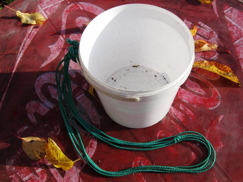 Фотография маленького пластикового ведерка для сбора ягод