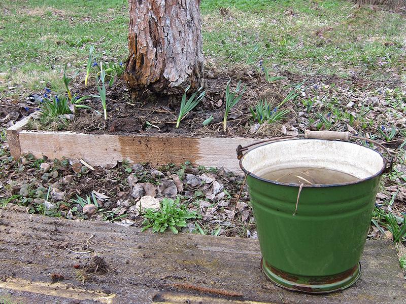 С помощью такого большого ведра удобно поливать деревья, набирая воду в ручье