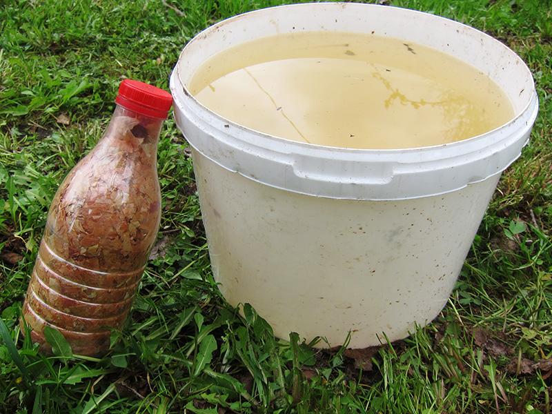В одну молочную бутылку можно набить огромное количество луковой шелухи, только сперва хорошо просушите ее.