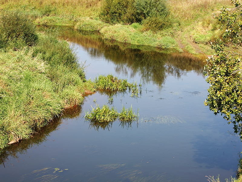 Тихая река интересна нам тем, что у нее приятно просто посидеть и понаблюдать за течением воды