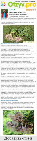 Мой небольшой рассках о хитростях выращивания чеснока в условиях загородной дачи в Лотошинском районе Московской области