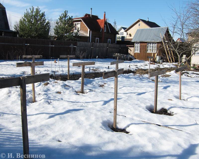 Высокие сугробы укрыли землю снежным покрывалом