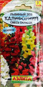 Моя фотогарфия семян цветов «Львиный зев»