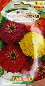 Моя фотогарфия семян цветов «Цинния Калифорнийская»