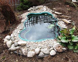 Бассейн в Томилино - во дворе у моих старых знакомых