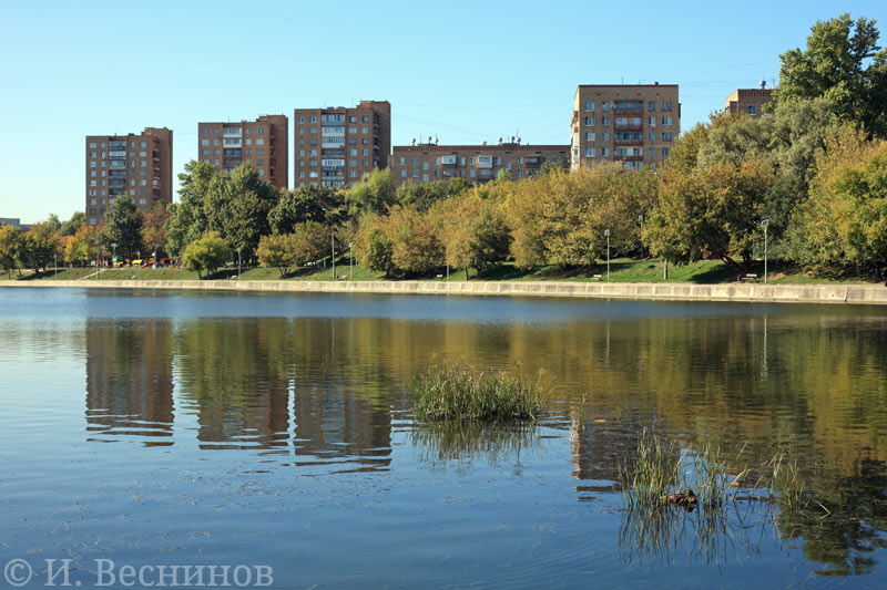 Вид на Кожуховский пруд в Южном округе Москвы