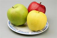 Фотография «Яблоки» с тремя яблоками разных цветов - красное, желтое и зеленое