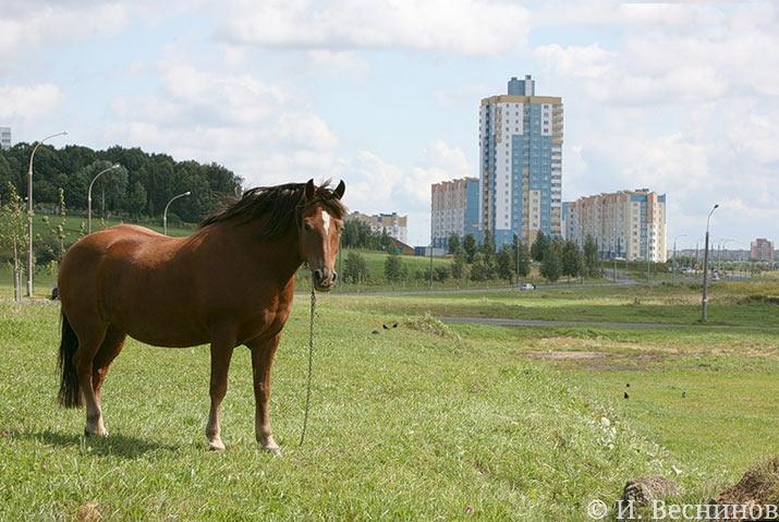 Минск - ещё одна столица бывшей республики СССР, которую я посетил с фотокамерой
