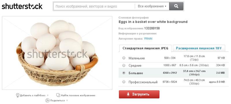 Продалась фотография куриных яиц в плетёной корзинке изолировано на белом фоне в Фотобанке «Shutterstock»
