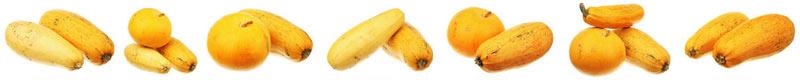 Моя фотография маленькой тыквы и нескольких кабачков