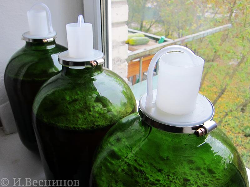 Урожай винограда был использован для приготовления вина. Он был кислый, но где взять лучше в Подмосковье?
