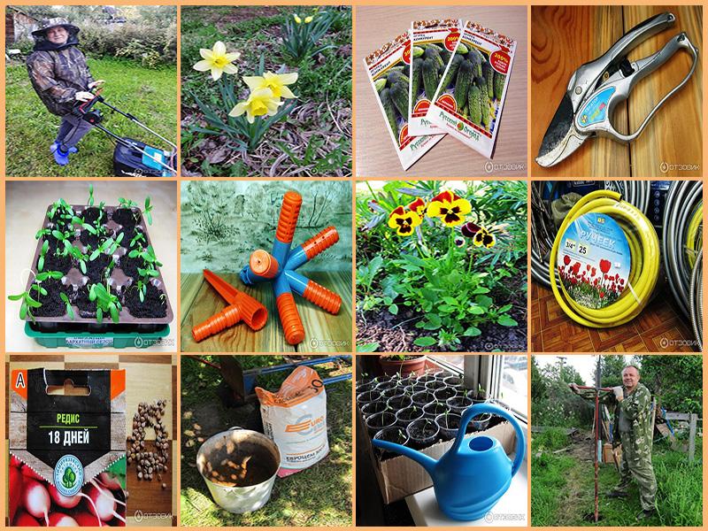 Вам не составит большого труда отыскать на Отзовике мои рассказы о семенах цветов и овощей различных производителей,            об инструментах и разного рода инвентаре для дачных работ, об одежде и обуви, которые пригодятся вам за городом для работ в саду и огороде.