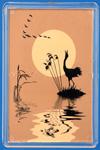 Благодаря своей природной красоте и впечатляющим брачным танцам журавли оставили заметный след в культуре  многих народов в различные исторические эпохи. Мифы и предания, связанные с журавлями, были обнаружены в районе Эгейского  моря, Саудовской Аравии, Китае, Японии и у индейцев Северной Америки. На севере японского острова Хоккайдо женщины из  племени Айны, чьи культурные традиции были ближе связаны с Сибирью, нежели с Японией, исполняли специальный «танец журавля»,  который в 1908 году был заснят известным американским фотографом немецкого происхождения Арнольдом Гентом (англ. Arnold  Genthe). В Корее танец журавля исполнялся во внутреннем дворе буддийского храма Тонгдоса со времён династии Силла (646 г  до н. э.). В Якутии до настоящего времени существует поверье, что даже нечаянное убийство журавля или разорение его гнезда  неизбежно приносит несчастье.