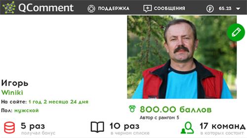 Мои восемьсот баллов и пятый уровень на сайте QComment.ru